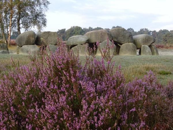Hunebedden en Heide, 3 daags arrangement